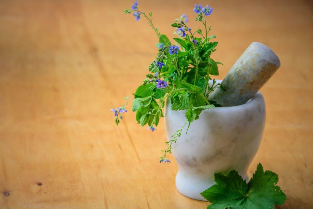 Santé naturelle en Vendée